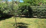 San Pietro Green