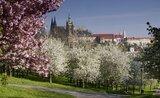 NH Prague