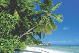 Coral Strand Smart Choice Hotel Seychelles