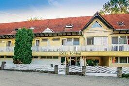 Forras Hotel - Maďarsko, Harkány
