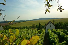Chata Ve vinohradu U Frantíka