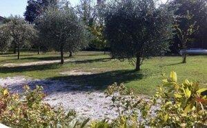 Villa Casetta Degli Ulivi