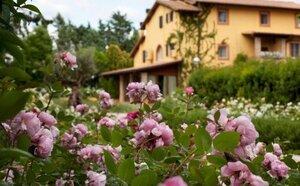 Hotel Garden Resort