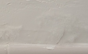 Plesen na stene