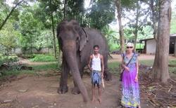 u slona