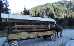 Obraciště koňských bryček Wlosienica