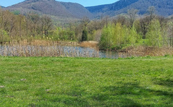 Rybník Hubert