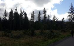 Siwa Polana - cesta ke vstupu do doliny