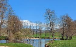 Rybník Netík